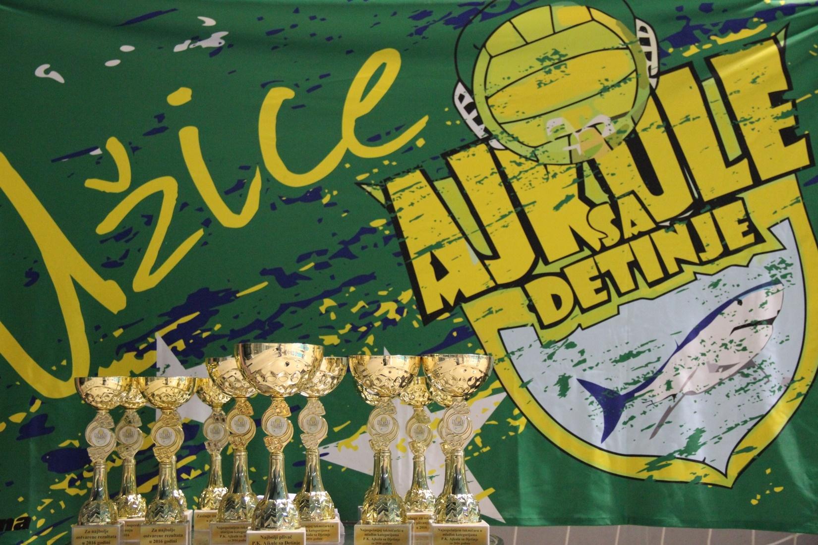 Мала ретроспектива такмичења уназад, I Ђетиња куп и II Ђетиња куп (1)