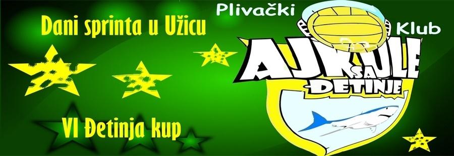 VI Ђетиња куп 2021 (SRB)